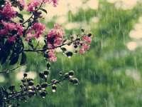 MARAMUREȘ: Vreme instabilă și precipitații în anumite intervale, în perioada 23 mai - 5 iunie