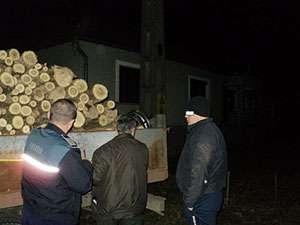 Maramureşean depistat de poliţişti în timp ce transporta ilegal material lemnos