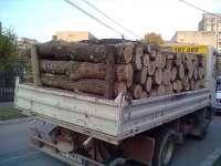 Material lemnos confiscat de poliţişti de la un tânăr din Budești