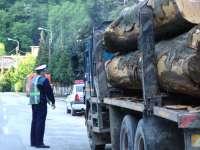 Material lemnos confiscat de poliţiştii din Tăuţii de Sus
