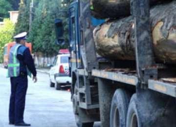 Material lemnos confiscat și amenzi aplicate de polițiștii maramureșeni