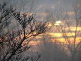 METEO - Cum va fi vremea în Maramureş în weekendul 25-26 februarie