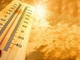 METEO - Cum va fi vremea în următoarele trei luni