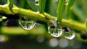 METEO - De marţi, revin ploile în toată țara