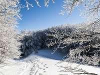 METEO - Starea drumurilor și a vremii în județul Maramureș pentru 16 ianuarie