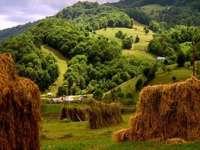 METEO: Temperaturi apropiate de cele normale, în intervalul 16 - 29 iunie în Maramureş