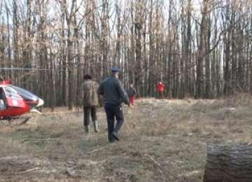Moarte în pădurile Vișeului - Un bărbat a murit lovit în plin de o creagă