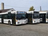 MODERNIZAREA TRANSPORTULUI PUBLIC în SIGHET – Maranord va achiziționa șapte autobuze electrice