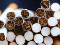 Nouă grupări de contrabandişti de ţigări destructurate. Un primar şi doi poliţişti de frontieră printre suspecţi