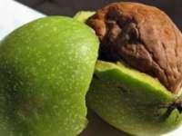 Nucile verzi previn infarctul și combat afecțiun ale stomacului