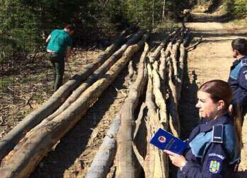 Ocna Şugatag - Controale ale polițiștilor în fondul forestier