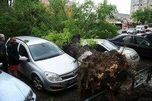 Opt persoane rănite, 26 de maşini avariate, 32 de copaci căzuţi în urma furtunii din Capitală
