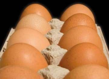 Ouă EXPIRATE, reştampilate şi vândute în magazine
