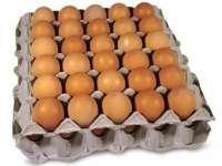 Ouăle, legumele și fructele s-au scumpit cel mai mult în noiembrie