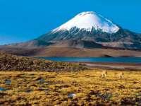 Patru alpiniști români vor escalada cel mai înalt vulcan din lume