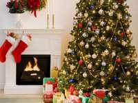 Patru întrebări-cheie care vă vor ajuta să alegeţi bradul de Crăciun perfect