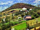 Patru seri pline muzică în Bradova, Bârsana, în luna august a acestui an