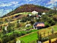 Patru seri pline de muzică în Bradova, Bârsana, în luna august a acestui an