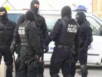 Percheziţii în Maramureş într-un dosar de evaziune fiscală, tăiere de arbori şi furt de arbori