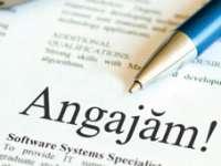 Peste 10.788 locuri de muncă vacante disponibile luni la nivel naţional, 224 în Maramureş