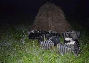PF SARASĂU - Contrabandiști, reținuți cu ajutorul câinelui poliţist