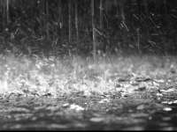 Ploi abundente, grindină și intensificări ale vântului în toată țara, de joi după-amiază până vineri seară