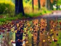 Ploi, intensificări ale vântului și precipitații mixte, începând de marți dimineață, în întreaga țară