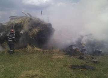 POLIȚIA: Tânăr din Coltău cercetat pentru distrugere prin incendiere