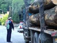 Poliţiştii au acţionat pentru combaterea ilegalităţilor silvice pe raza orașului Vișeu de Sus