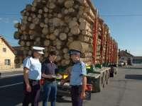 Poliţiştii maramureșeni au acţionat pentru protejarea fondului forestier