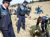 Polițiștii maramureșeni vor planta mâine pomi cu ocazia ZILEI INTERNAŢIONALE A PĂDURII