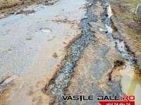 Poluare accidentală cu ape de mină a râului Lăpuș