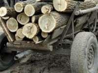 PREGĂTIRI PENTRU IARNĂ - Cât costă o căruţă cu lemne de foc în Sighetu Marmaţiei