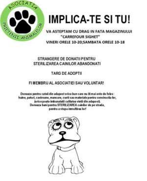"""""""Prietenii animalelor"""" organizează o campanie de strângere de donații pentru sterilizarea câinilor fără stăpân"""