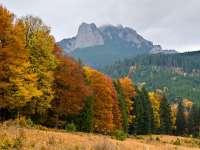 Prima etapă din Ștafeta Munților din acest an în are loc în Masivul Ceahlău