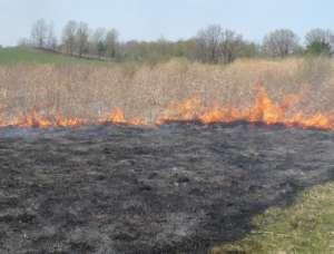Primăvara vine cu incendii de vegetaţie la Borşa