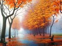 PROGNOZA METEO: Cum va fi vremea până în 22 noiembrie, în Maramureş