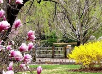 Prognoza meteo până duminică - Luna aprilie va debuta cu temperaturi ridicate