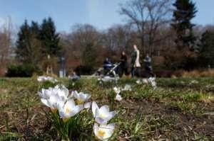 PROGNOZA METEO până în aprilie. Cum va fi vremea de Paşte