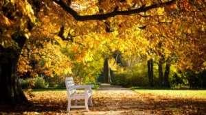 PROGNOZA METEO până pe 28 septembrie. Cât de cald va fi şi cât va ploua în Maramureş