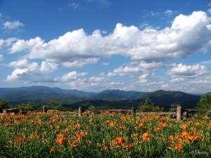 PROGNOZA METEO până pe 6 iulie. Aflaţi ce temperaturi se vor înregistra în Maramureş