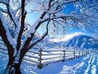 PROGNOZA METEO pe două săptămâni: Cum va fi vremea de Crăciun în Maramureș