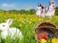 PROGNOZA METEO pe două săptămâni. Cum va fi vremea în Maramureș de Paştele Catolic