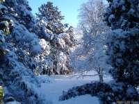 PROGNOZA METEO pentru următoarele două săptămâni: Temperaturi de -17 grade în Maramureş