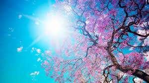 PROGNOZA METEO: Vremea in Maramures pana in 23 martie
