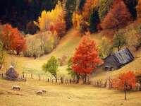 Prognoza toamnei în Maramureş. Cum va fi vremea în următoarele trei luni