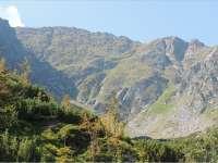 Rezervaţia Biosferei Pietrosul Rodnei, scoasă din patrimoniul UNESCO