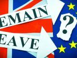 Rezultate parțiale referendum în Marea Britanie: 51,5% pentru Brexit, 48,5% pentru rămânerea în UE