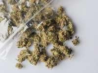Rona de Sus - 3,5 kg cannabis confiscate și un tânăr din SIGHET reţinut pentru posesie de droguri