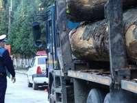 Rona de Sus şi Rona de Jos: Confiscare de material lemnos